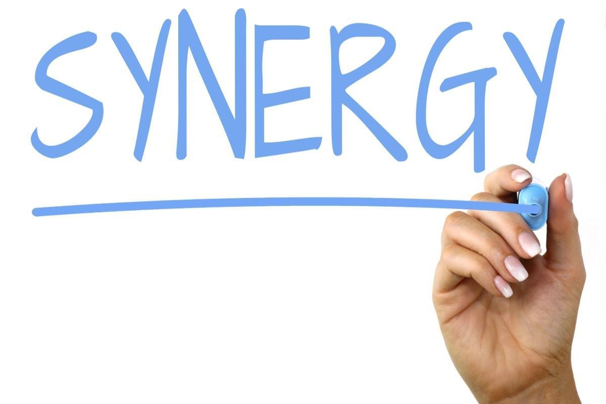 Synergy-bizserve.com.np